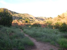 Hiking Trails at Campsite