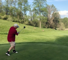 Bill Golf Deer