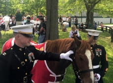 Marines - Ceremony for Unveiling