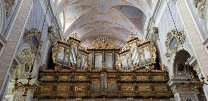 Gottweig Church Organ