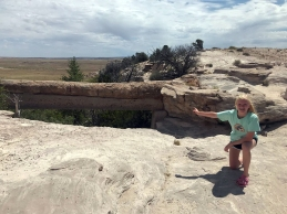 Lily Agate Bridge Petrified Forest